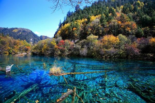 旅游    1992年,九寨沟荣登世界自然遗产,同年,邻近九寨沟的黄龙风景