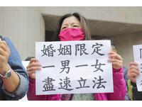 ▲▼護家聯盟抗議活動。(圖/記者黃克翔攝)