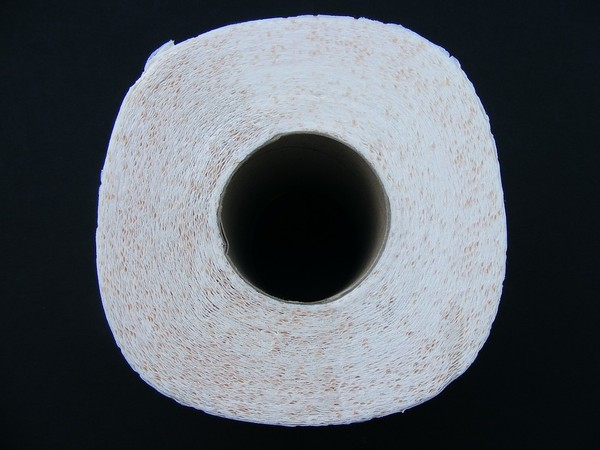 ▲▼捲筒衛生紙,衛生紙,廁所。(圖/取自免費圖庫Pixabay)