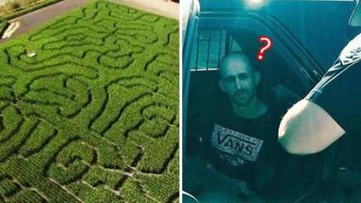 躲進「5000坪巨大迷宮」!嫌犯被逮超傻眼,跳針問警:怎麼找到我的啦
