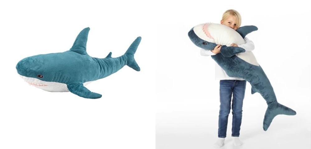 推特爆红鲨鱼一家