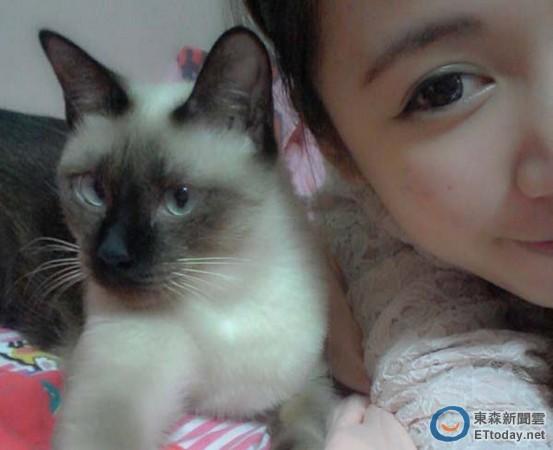 壁纸 动物 猫 猫咪 小猫 桌面 553_450