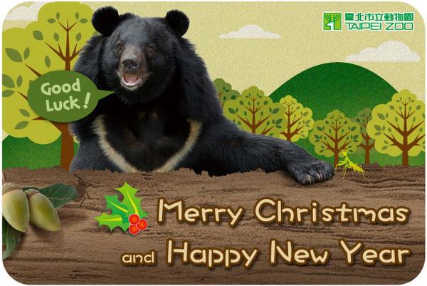 可爱的动物喔~像是穿山甲,小猫熊,无尾熊等等,都是电子贺卡的主题之一