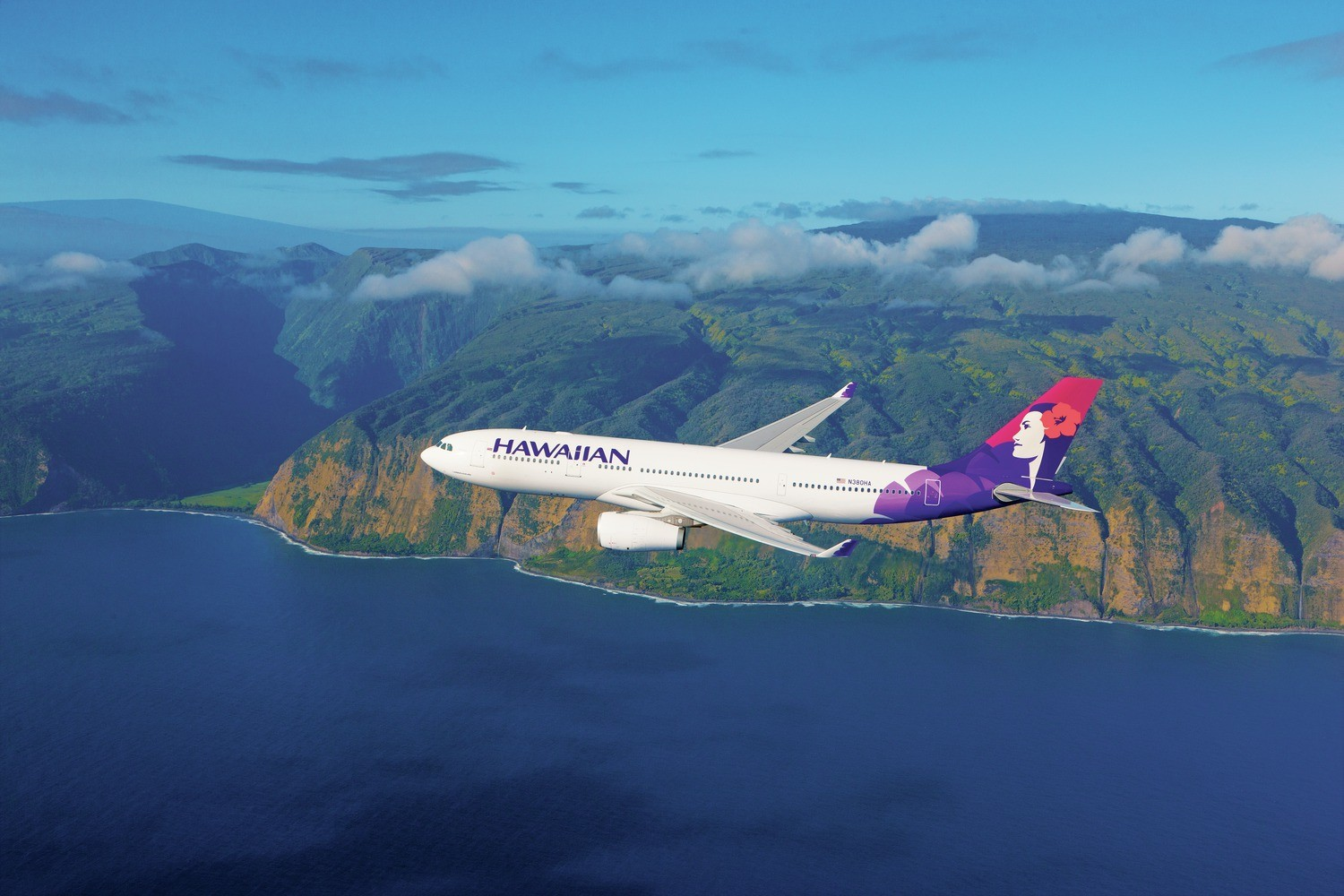 Hawaiian Airlines. (figure / delivered by Hawaiian Airlines)