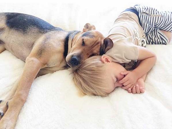 小男孩与狗最萌午睡时光