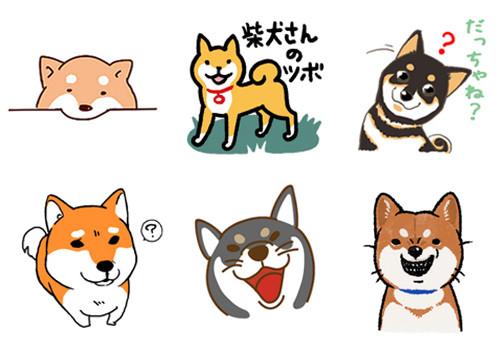 爱柴人士看这边!超受欢迎的6款柴犬line贴图