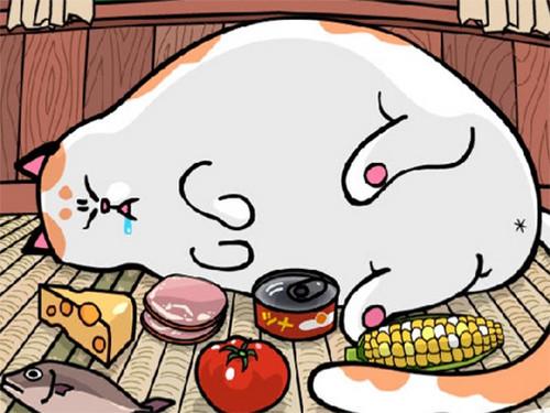 可爱胖猫动画头像