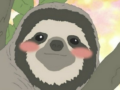 虽然并不是第一眼就会觉得可爱的动物,但是树懒有种越陈越香的?