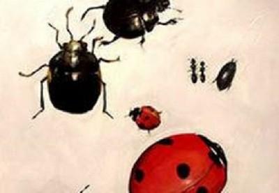 換個角度讀解甲蟲,迪士尼迷一眼看穿