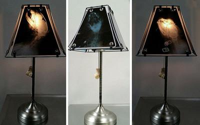 貓咪頭蓋骨X光片→檯燈 你敢不敢用