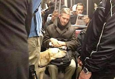 導盲犬累壞 乘客體貼出借雙腿讓牠瞇