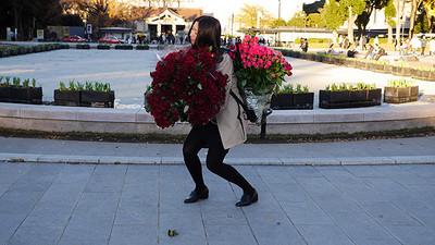 100朵玫瑰求婚,5公斤恰好是肩上重量
