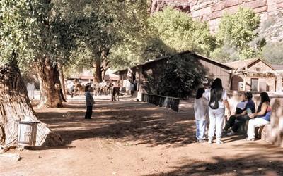 大峽谷的秘境部落,騎騾子才找到他們