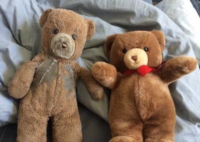 買兩隻相同泰迪熊,媽選擇將一隻塵封30年