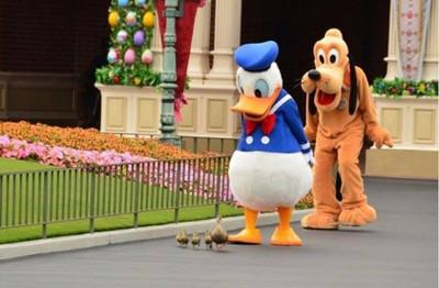 日本迪士尼開園前的唐老鴨,怎麼比開園後更萌!