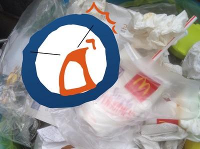打開垃圾桶蓋子驚見小橘貓!等…先別急著烙人