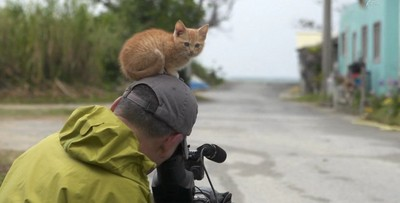 攝影師內建貓磁鐵,小橘貓連睡覺都離不開
