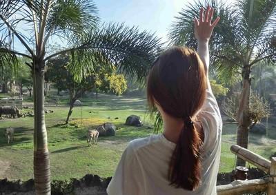 【捲喵愛旅行】親愛的,我住進峇里島野生動物園裡!