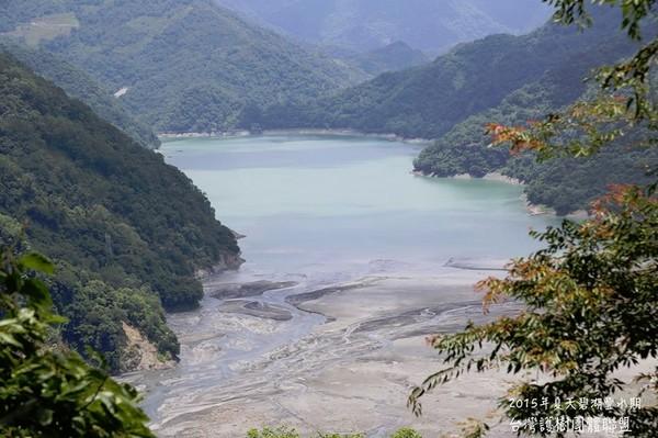 南投碧湖變「黑海」 護樹聯盟:800年都清不完淤泥