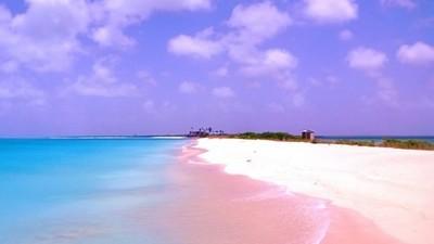 藍天下閃爍的粉紅海灘 女人這輩子絕對要去一次