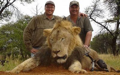 獵人殘殺動物大會!po文記得燦笑合拍屍照唷