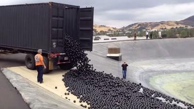 加州久旱不解,不得不解決低水位…欸別亂倒巧克力球