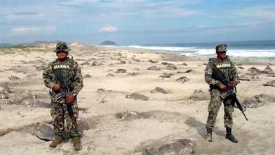 墨西哥海軍陸戰隊守衛海岸,新任務是…保護海龜下蛋!