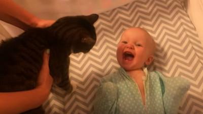 寶寶1秒變激動妹,原因是..喵陛下駕到~