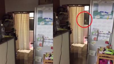 天鵝颱風夜驚見鬼敲窗,偏偏這時尿意來襲...