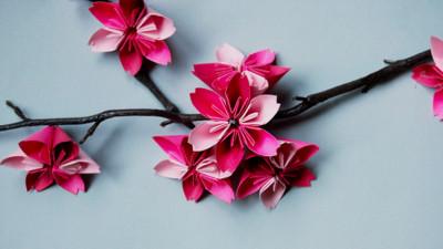 夢幻櫻花摺紙!讓粉嫩花瓣開滿家裡吧