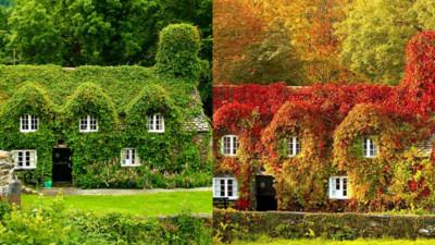 隨四季變化顏色的家,難怪有錢人喜歡秋天
