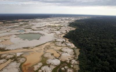 雨林變不毛之地,全因人類貪婪淘金夢