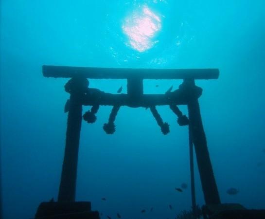 「海底 鳥居」の画像検索結果