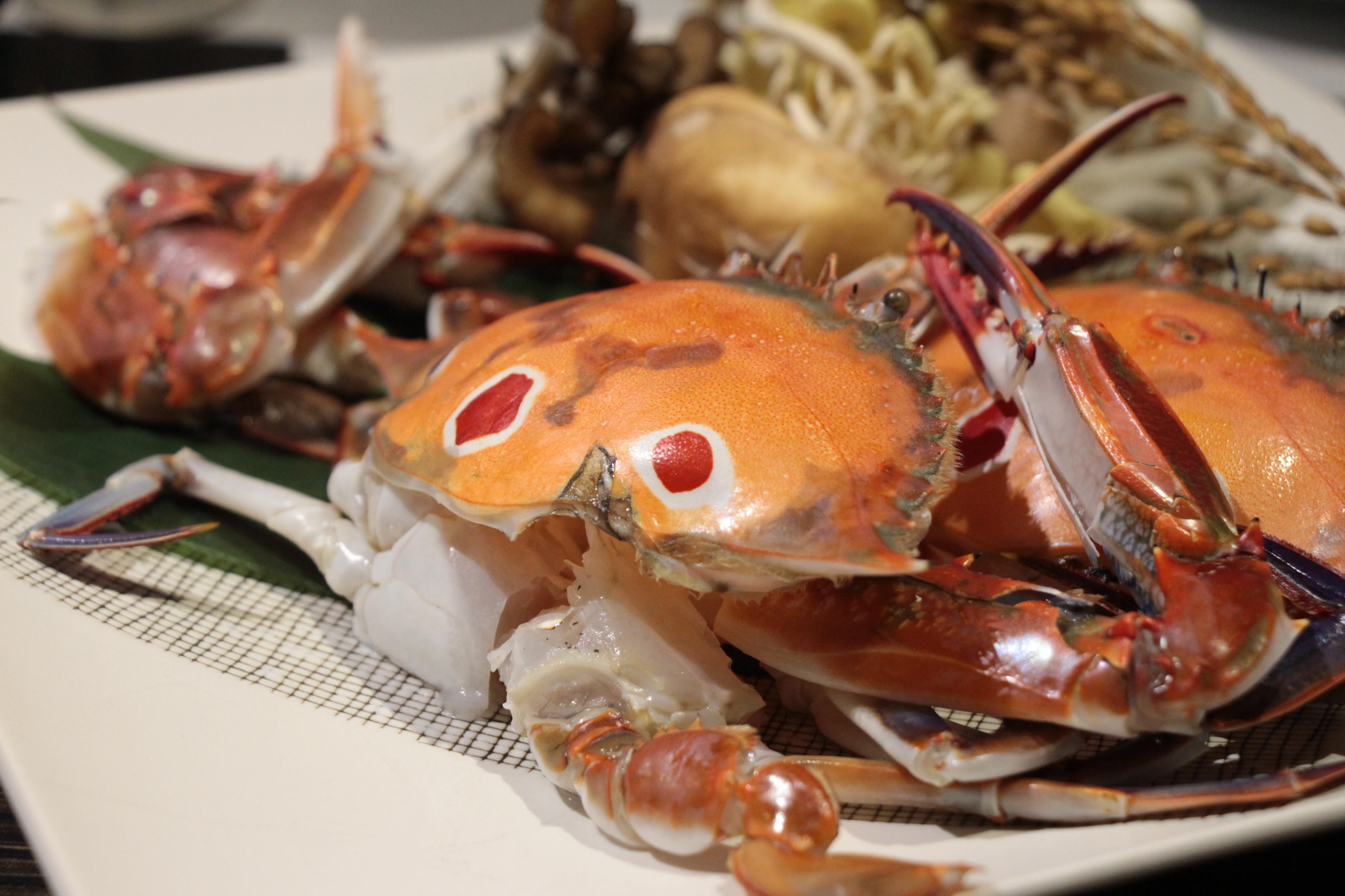 濱之屋推出秋蟹與秋鮭二款季節限定鍋。(圖/黃士原攝)
