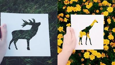 一張紙裁出你要的圖案,隨手疊出幅文青藝術照