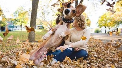 帶愛犬一起拍婚紗…汪星人玩High飛身擋鏡了啦!