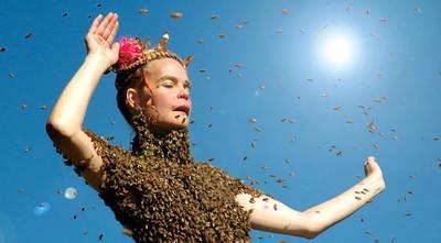 8種詭異戀物癖,被蜜蜂叮就能有快感?