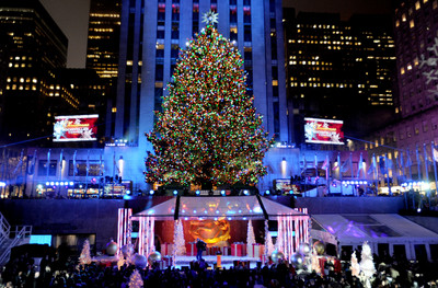 聖誕節倒數! 聖誕樹漲價 買氣仍暴衝