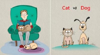 你愛貓獨立還是狗熱情?飼養前先評估自己生活習慣