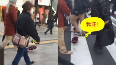 日本車站驚見透明狗?!過馬路不忘回頭吠路人