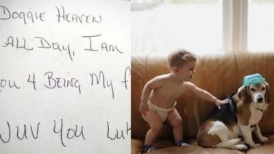男童寫信到「狗天堂」得回信:這裡可以每天玩很幸福