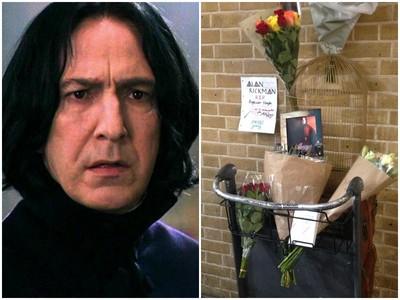 在9又3/4月台悼念艾倫瑞克曼!石內卜教授再見了...