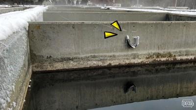 -30°C冰天雪地,鱒魚一跳..凍在牆上了(||゚Д゚)