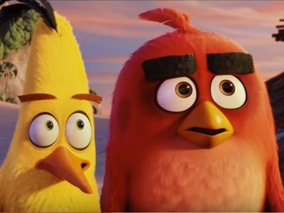 《憤怒鳥》全新預告 小紅鳥愛生氣全是因為「眉毛」!