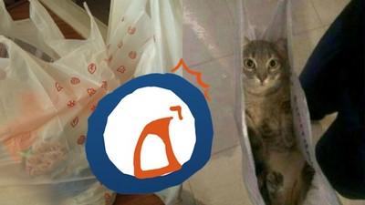 去超市買餅乾…打開塑膠袋竟附仰躺貓無辜看著我