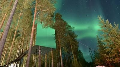住進瑞典樹屋旅館,不只實現童年夢還有極光陪睡❤