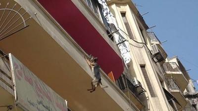餓壞汪汪想自由,跳陽台吊掛險死…直到好人類伸出援手