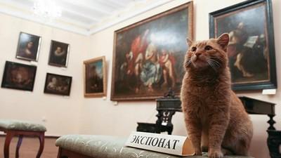 愚人節的萌玩笑成真,貓咪入駐博物館當館員啦!