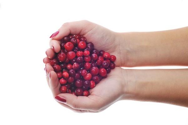 蔓越莓應該怎麼吃?(圖/達志/示意圖)