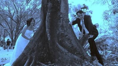 婚禮照被拍成像冥婚,攝影師沒切腹~勇敢出來面對了